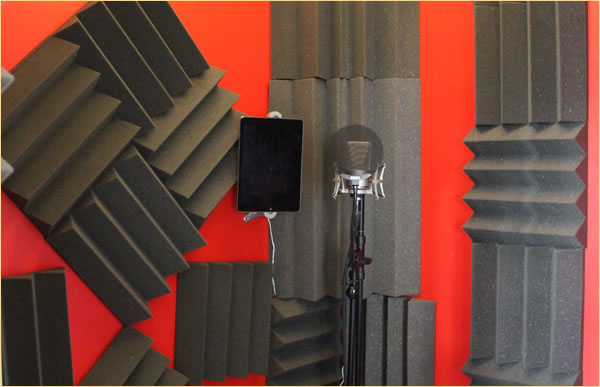 tim paige voiceover home studio